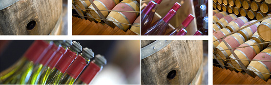 Equipement professionnel pour la degustation viticulteur